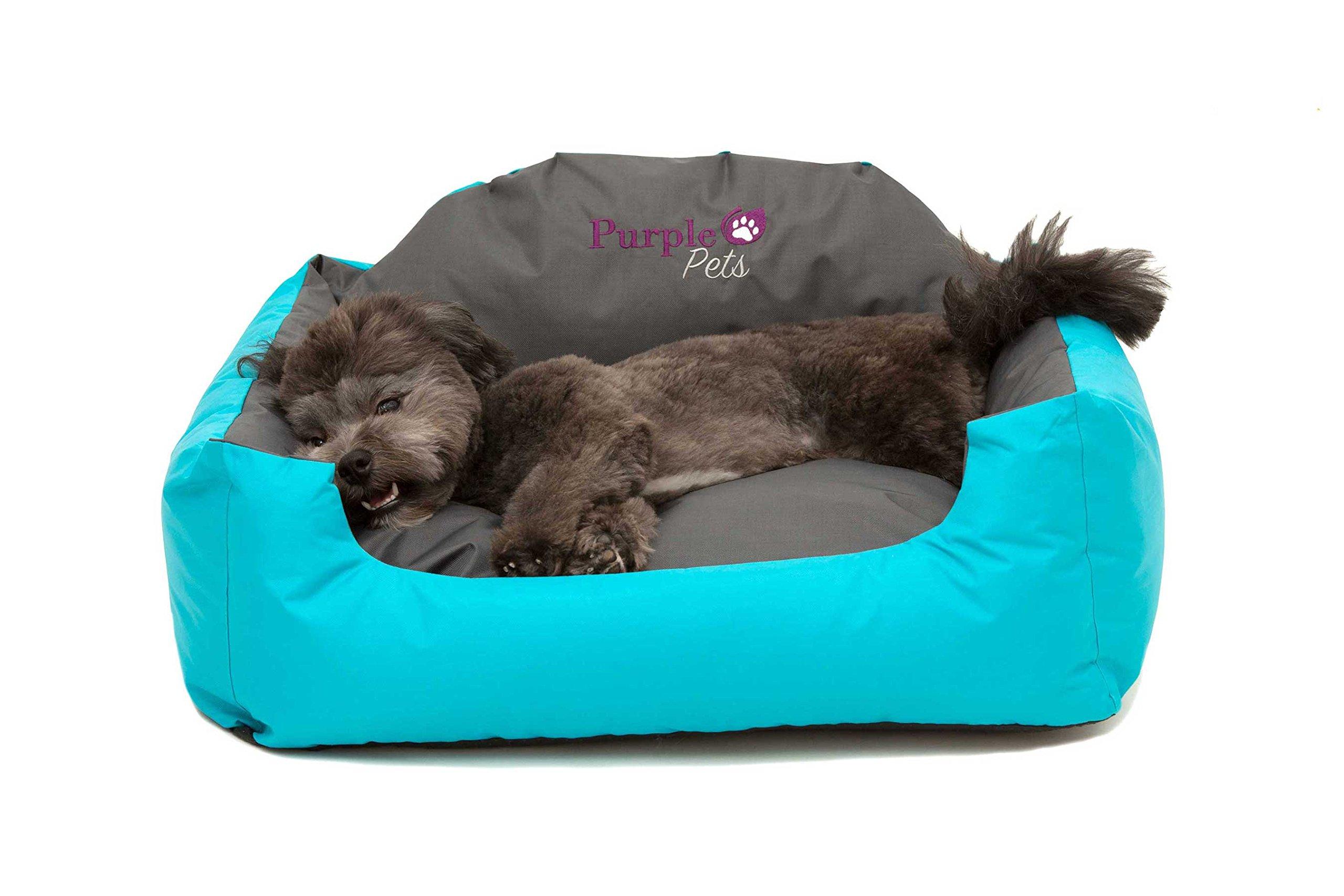 Cama para Perro, Cama para Gato, Cama de Mascota, Suave Sofá Cesta, resistente al agua, Fácil limpieza! Purple-Pets (Pequeño, Azul): Amazon.es: Hogar