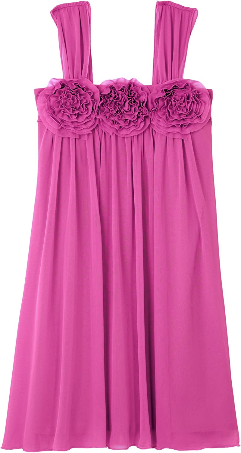 Amy Byer Big Girls' Coming Up Rosettes Enchanted Empire Dress