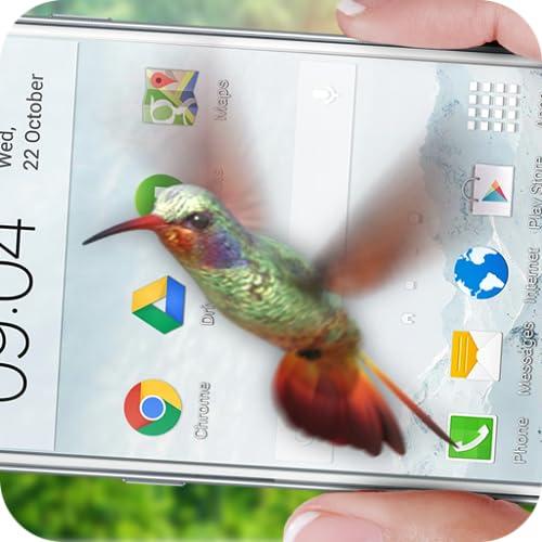 Pájaro en el teléfono: colibrí volador broma