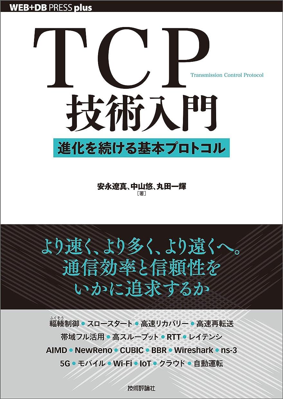 アクセント喉が渇いた小石TCP技術入門――進化を続ける基本プロトコル WEB+DB PRESS plus