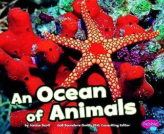 Best ocean habitats inc Reviews