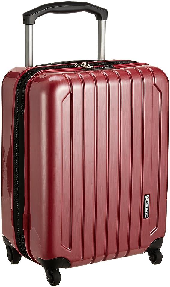 パラシュート灰炭水化物[スカイナビゲーター] スーツケース 機内持込可 保証付 40L 51.5cm 3.4kg SK-0725-49