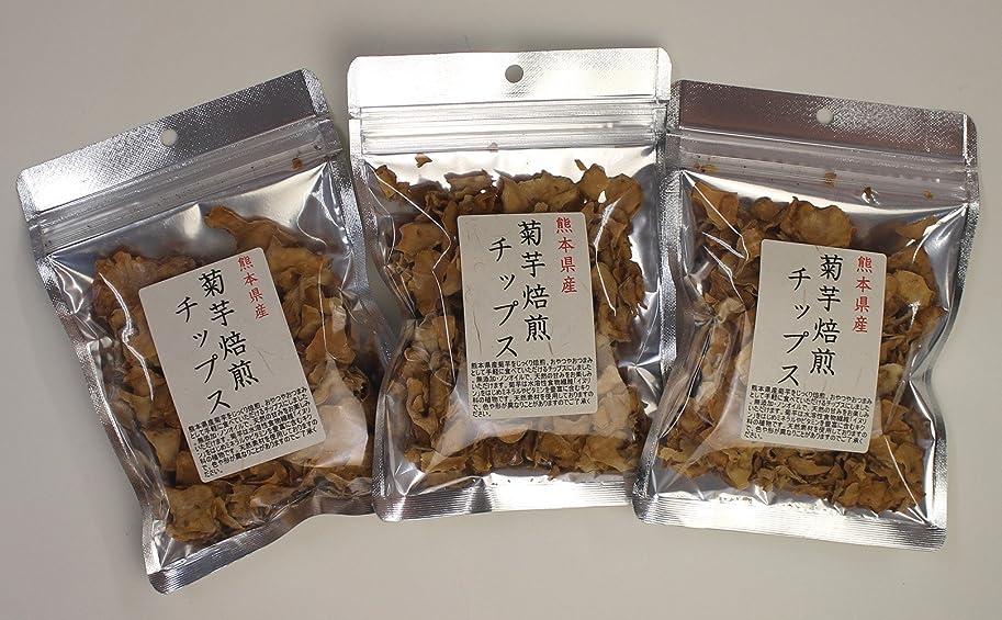 みなさん腐ったキャリア菊芋 国産 チップス 熊本県産 30g (3)