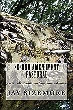 Second Amendment Pastoral: poems about guns, violence, and addiction