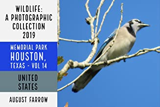 Wildlife: 19 Days in Memorial Park - 2019: A Photographic Collection, Vol. 14 (Wildlife: Memorial Park: Houston Texas)
