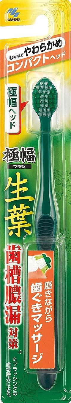 リングバックペンス差し引く生葉(しょうよう)極幅ブラシ 歯ブラシ コンパクトヘッド やわらかめ