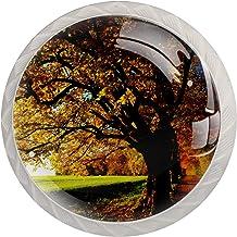 Herfst Bos Boom Set van 4 Lade Knoppen Trekt Kast Handvat voor Thuis Keuken Garderobe Kast Home Decor Hardware Pull Knoppen