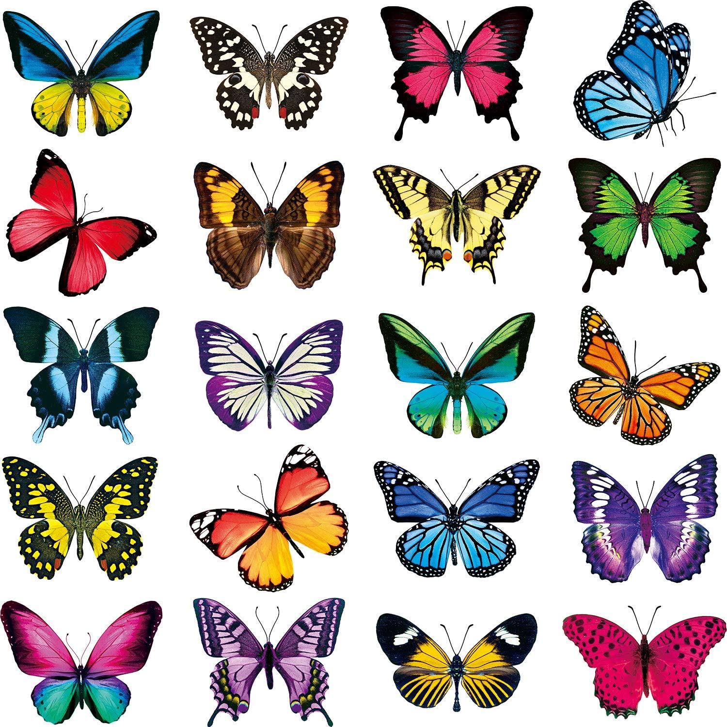 Product 20 Pieces Large Size Great interest Butterfly Wind Anti-Collision Clings Window