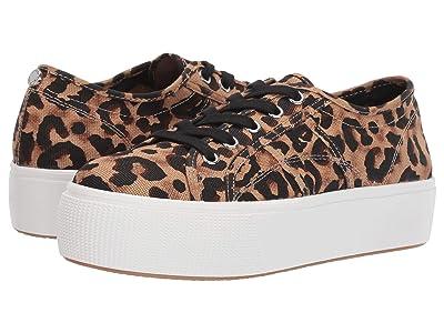 Steve Madden Emmi Platform Sneaker (Leopard) Women