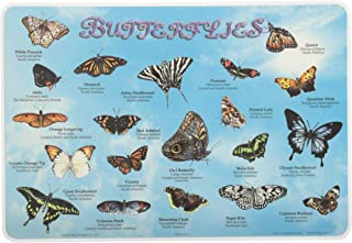 Painless Learning Butterflies Placemat