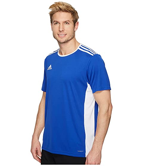 Blanco Jersey Adidas Azul 18 Entrada Bold UqEnESFHW