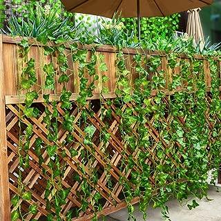 Best false ivy plant Reviews