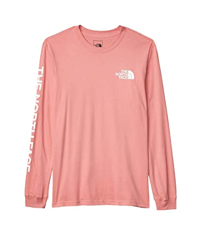 The North Face Long Sleeve TNFtm Sleeve Hit T-Shirt (Mauveglow) Men