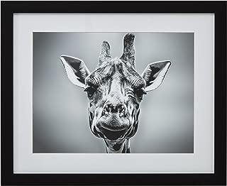 Modern Black and White Giraffe Portrait Photo Print Framed Wall Art Décor - 13 x 15 Inch Frame, Black