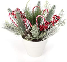 iPEGTOP 14.2 inches Holiday Tree Christmas Centerpiece Potted Tabletop Tree Artificial Plants, Christmas Crutch Plastic Ca...