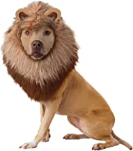 Brown_Lion Dog Costume