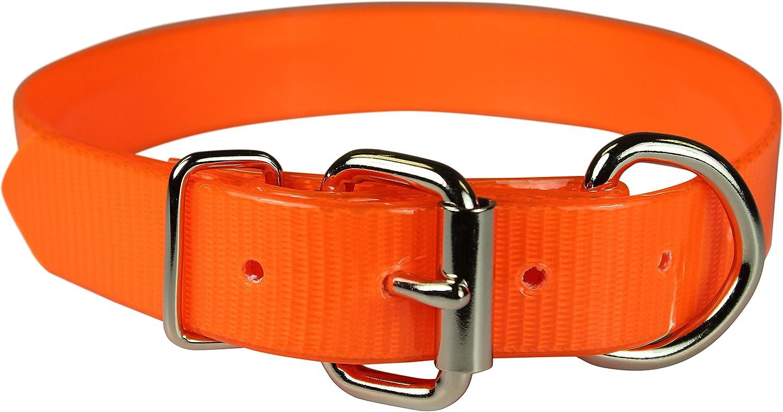 OmniPet 107DOR18 Sun Glow Dee in Front Dog Collar, 3 4  x 18 , orange
