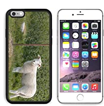 MSD Premium Apple iPhone 6 Plus iPhone 6S Plus Aluminum Backplate Bumper Snap Case Portrait of a lamb behind an electric fence IMAGE 30574376 by MSD Customized Premium