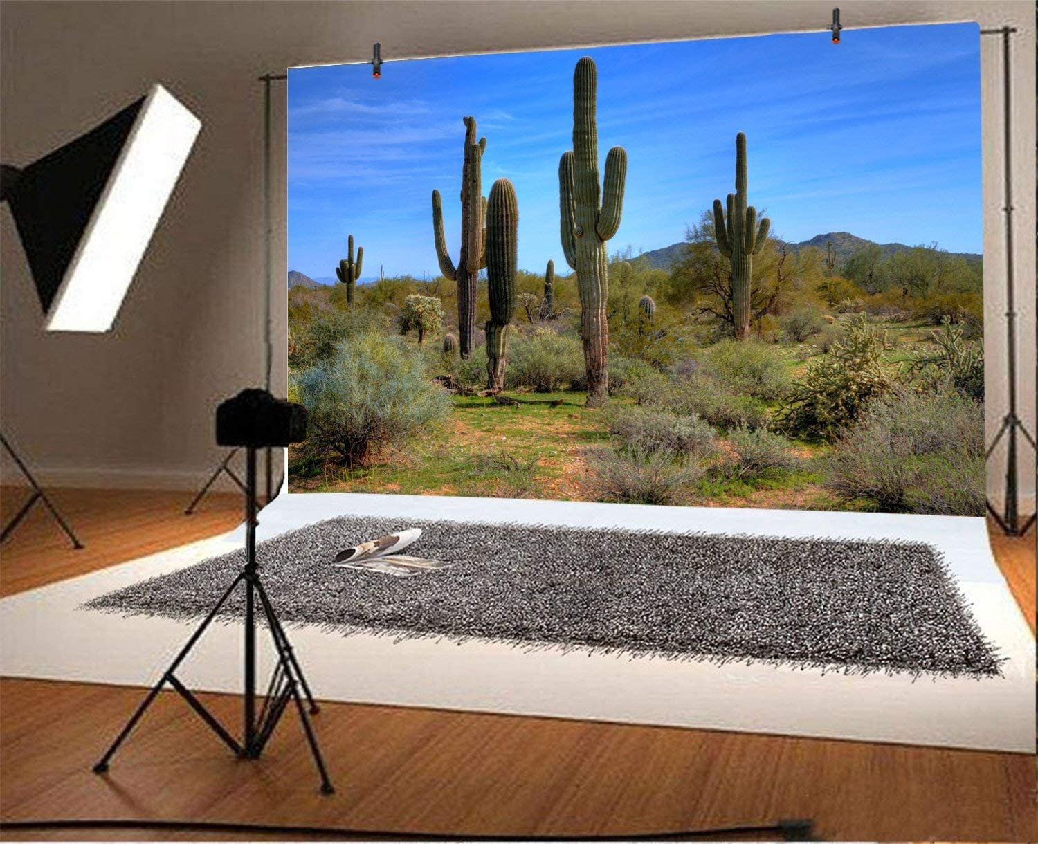 15x10ft Western Wild Cactus Backdrop Blue Sky Southwest Desert Green Large Prickly Cholla Stem Mountains Photography Background Travel West Exploration Photo Studio Props