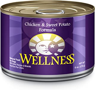 Wellness Complete Health Natural Wet Canned Dog Food Chicken & Sweet Potato
