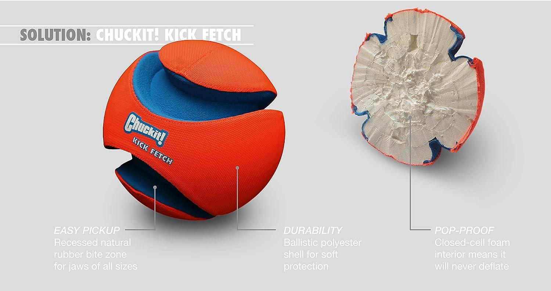 ChuckIt! Kick Fetch Ball, Large: Pet Supplies