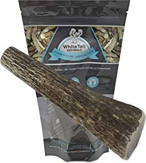 WhiteTail Naturals Whole Elk Antlers for Dogs (1 Pack Large) Natural Dog Chews   Naturally Shed Antler Bone Chew Toy