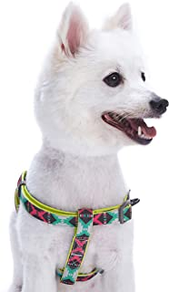 Blueberry Pet 11 Designs Soft & Comfy Vintage Tribal Dog Collars, Harnesses or Leashes