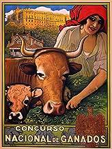 Concurso Nacional de Ganados - Vintage Spanish Advertising Poster (14 x 18)
