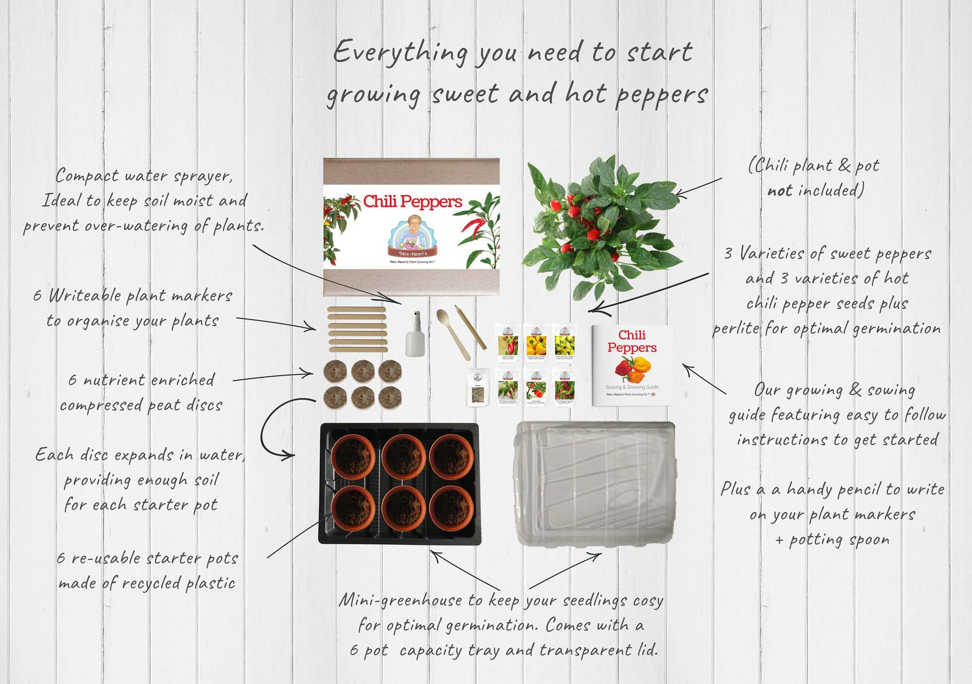 Chiles - Mrs Henris Plant Growing Kit. Cultiva 6 tipos de chiles ...