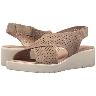 Johnston & Murphy Cecilia (Taupe Suede) Women