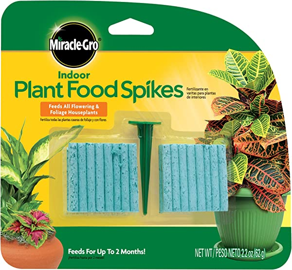Miracle Gro 300157 Plant Food 48 Spikes Indoor Fertilizer Pk