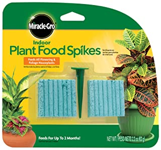 Miracle-Gro Indoor Plant Food Spikes, Includes 48 Spikes - Continuous Feeding for all Flowering and Foliage Houseplants - NPK 6-12-6, 1 Pack of 48 Spikes
