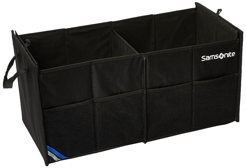 Samsonite Premium 2 Compartment Trunk Organizer
