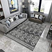 Luxurious Non-Slip Area Carpet, No Lint, No Fading, Modern and Simple Non-Slip Carpet Floor Mat, Suitable for Bedroom, Liv...