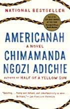 Americanah - Fiction Travel Books