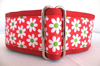 Regal Hound Designs 2 inch Wide Martingale Dog Collar, Lined, 2 Sizes, Red Daisy