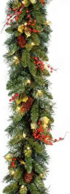 National Tree 9 Foot by 10 Inch Classical Collection Garland with Cones, Holly Leaves, Red Berries and 50 Clear Lights (CC1-3