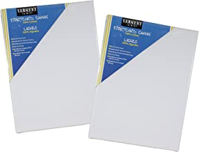 Sargent Art Value Pack 16 x 20 Inch Stretched Canvas Pack of 2, 2 Piece