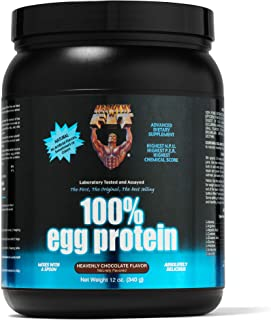 Healthy 'n Fit 100% Egg Protein 12-Ounce Bottle Chocolate, Tub