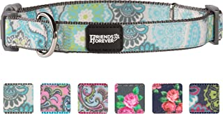 Friends Forever Paisley Dog Collar for Dogs, Fashion Print Garden Pattern, Cute Puppy Collar, Available in Size Small/Medium/Large