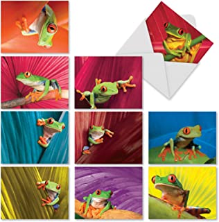 Frog Days' Boxed Set of 10 Gratitude and Thank You Cards with Envelopes, Assorted Froggy Thank You Notes 4 x 5.12 inch, Colorful Tree Frog Gratitude Greeting Cards for Friends and Family M9637TYG