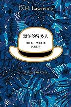 漂泊的异乡人 (Chinese Edition)