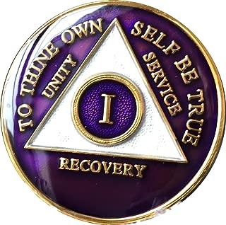 1 Year AA Medallion Metallic Purple Tri-Plate Gold Plated Chip