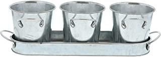 Barnyard Designs Succulent Herb Pot Planter with Tray for Indoor and Outdoor Use Multipurpose Utensil Holder Rustic Vintage Galvanized Metal Herb Plant Holder (Set of 3)