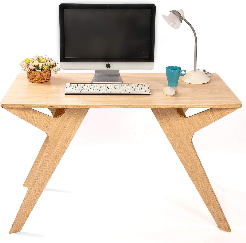 Computer Desk, Home Office Desk, 47