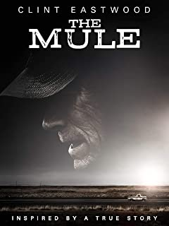Best The Mule Review