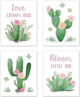 cactus nursery baby