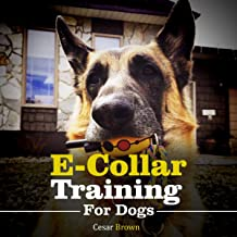 E-Collar Training for Your Dog: The Most Exhaustive and Complete Guide for E-Collar Dog's Training. No Dog's Pain and More Training