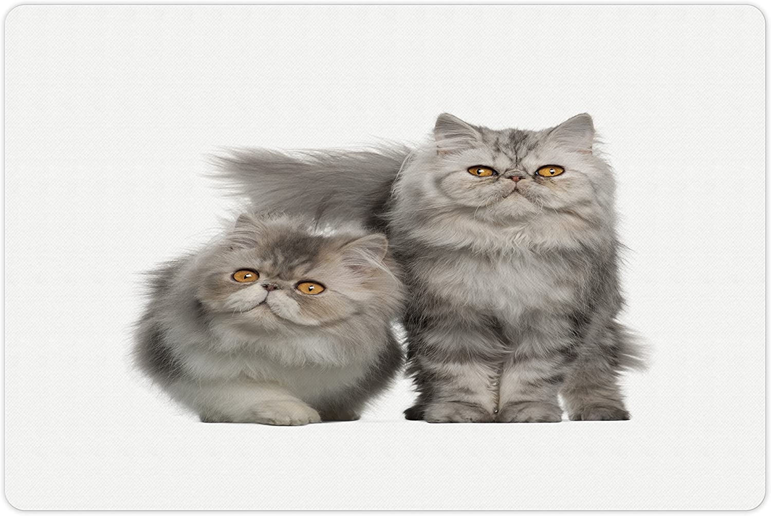 Lunarable Cat Lover Pet Mat Department store Bargain sale for Portrait and Water Food Pers of