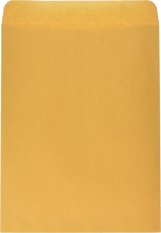 Schule smart 28 LB Kraft Umschläge mit Instant Instant Instant Stick Klappen – 25,4 x 33 cm – 100 Stück B003U6QLPO | Wirtschaft  c7aab3